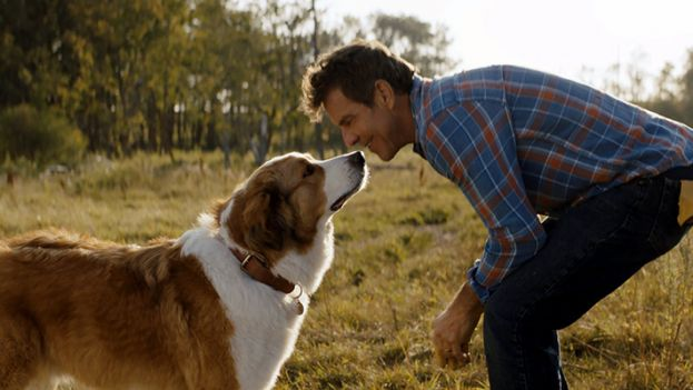 Ethan played by Dennis Quaid communicating with Bailey the dog.