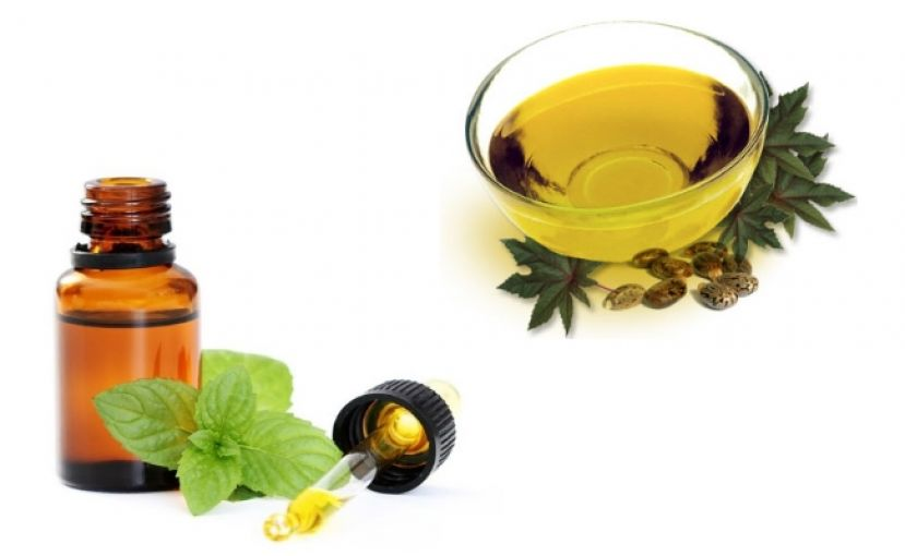 Castor oil and mint oil